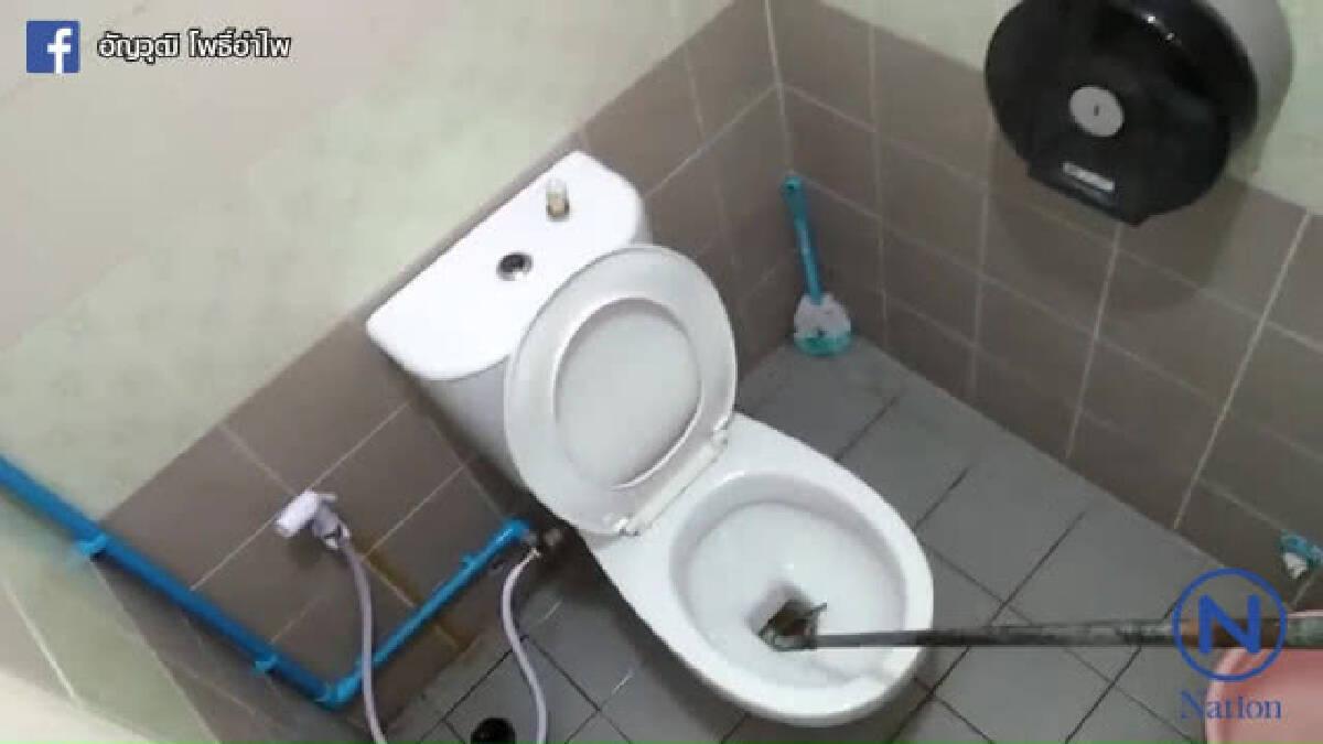 """หนุ่งผวาหนักถูกงูกัด """"น้องชาย"""" เตรียมรื้อชักโครกห้องน้ำ"""