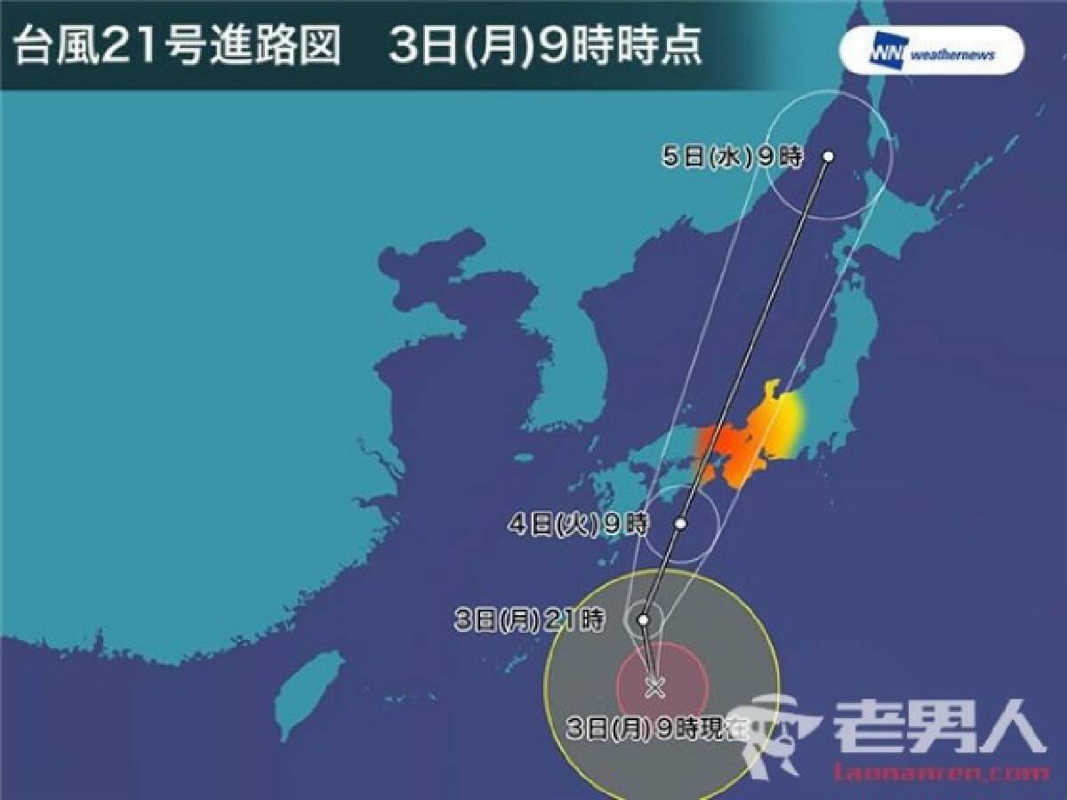 """""""เกาะแมวโอคิชิม่า"""" โดนเต็มๆ! โซเชียลแห่ภาวนาให้น้องๆปลอดภัย"""