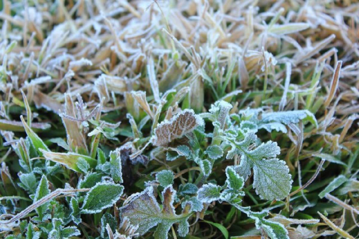 เริ่มฤดูหนาวเป็นทางการ ลุ้นกทม.หนาวนี้ 15°C