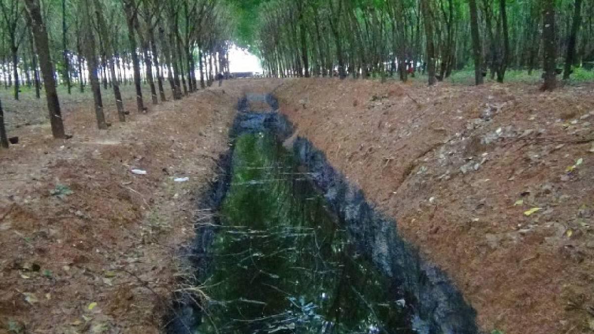 อึ้งใช้ที่ดิน สปก. รับทิ้งกากอุตสาหกรรมกลางสวนยาง ป่าต้นน้ำชาวแปดริ้ว