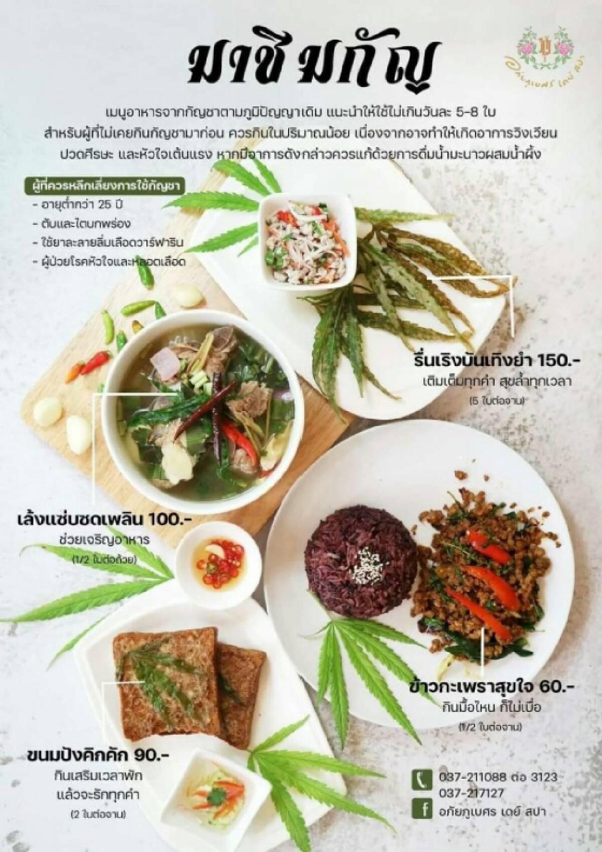 """เปิดตัวแล้ว! ร้านอาหาร """"กัญชา"""" แห่งแรกในไทย"""