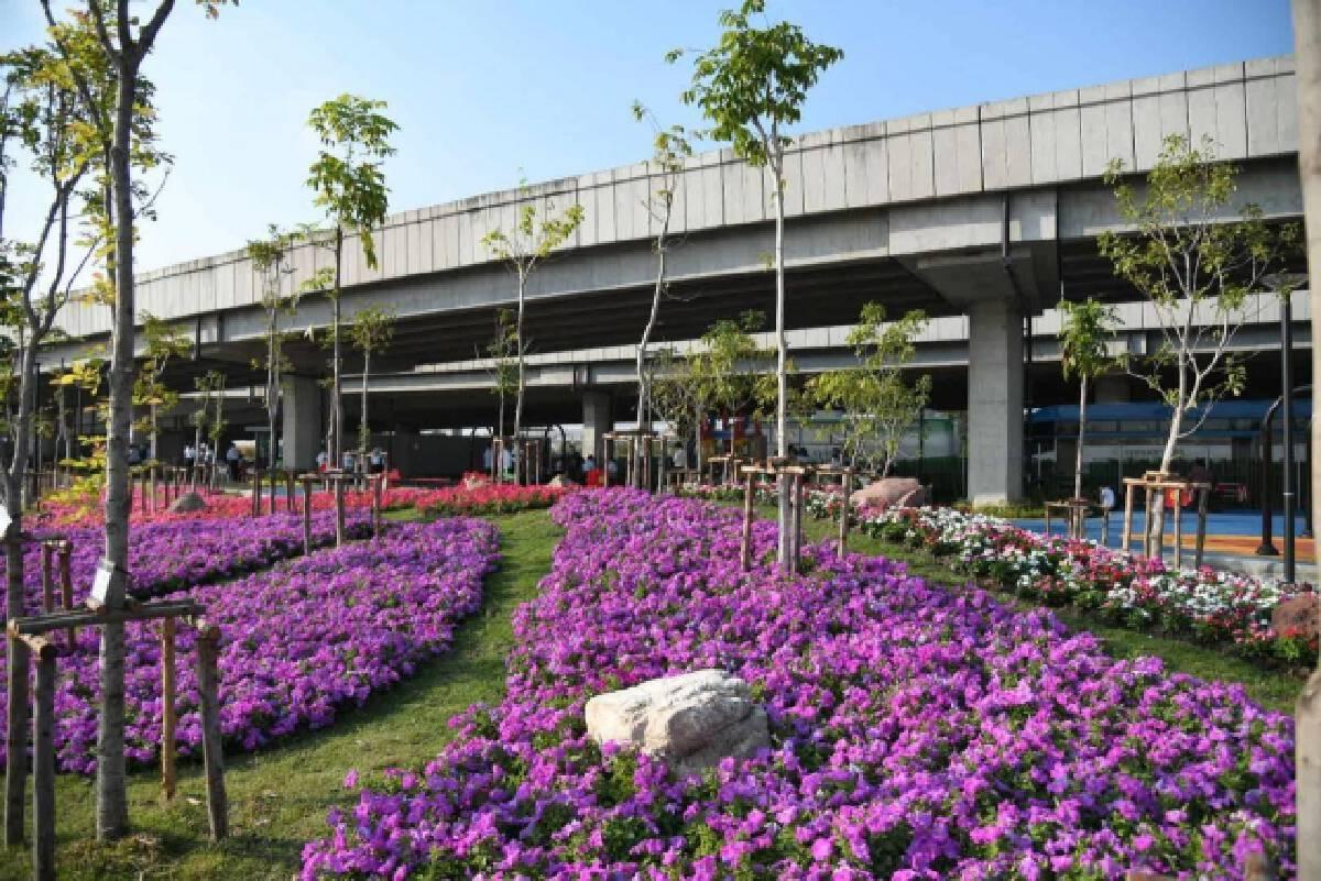 """เปิดแล้ว """"สวนวนาภิรมย์ร่มเกล้า"""" สวนสาธารณะแห่งใหม่ พร้อมทุ่งดอกแพงพวยหลากสีบนพื้นที่กว่า 4 ไร่"""