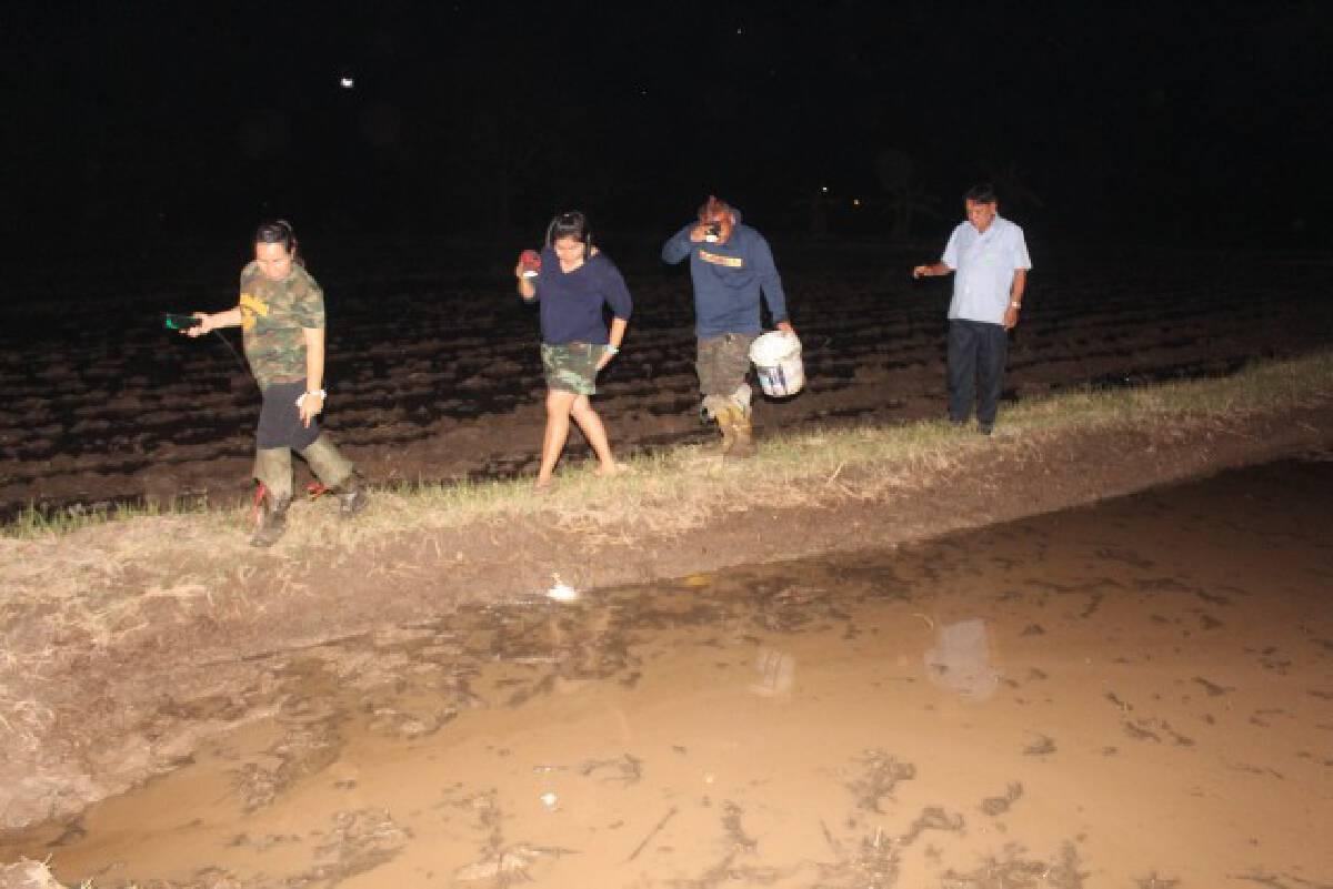 ชาวบ้านส่องไฟจับปูนาประกอบอาหาร-สร้างรายได้เสริม