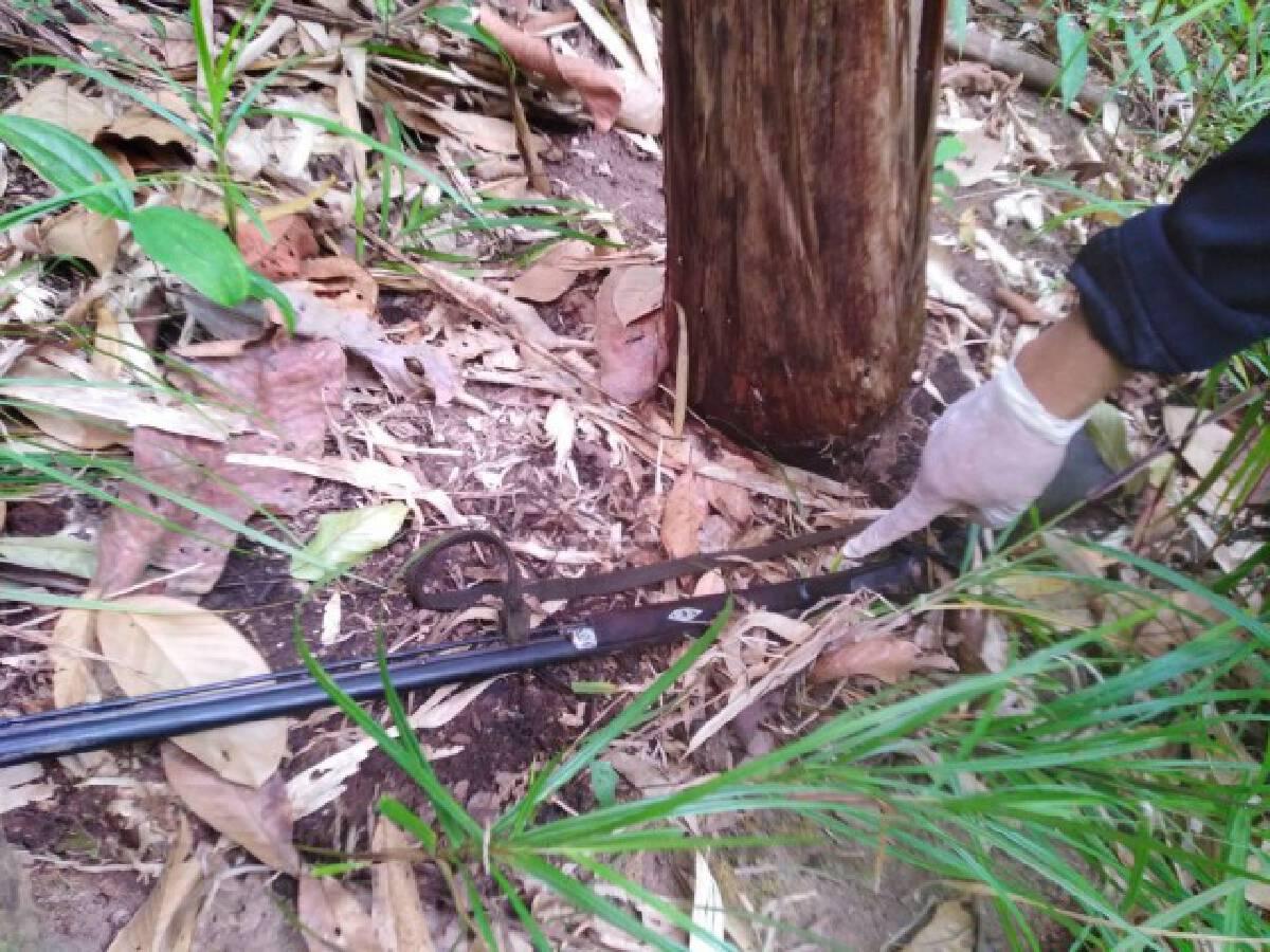 สองนายพรานดวลปืนสนั่นป่า-ดับ 1 สาหัส 1