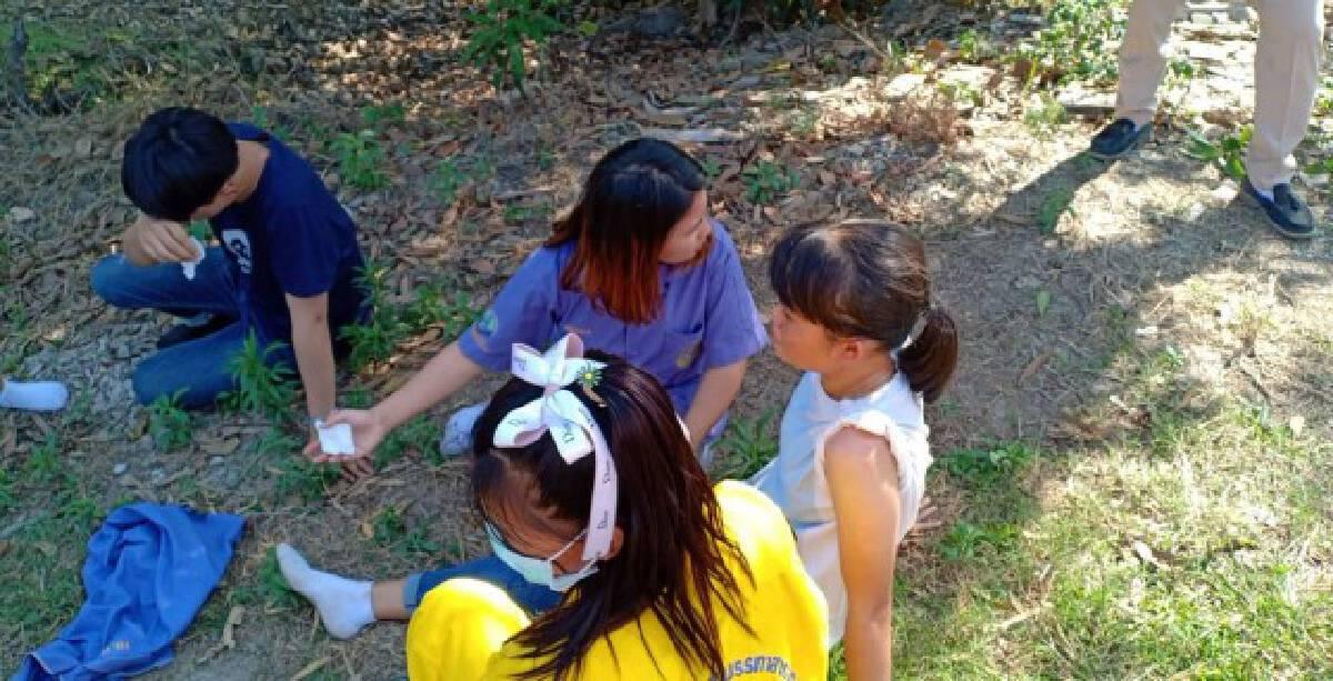 ผึ้งแตกรังรุมต่อยครูนักเรียนบาดเจ็บเกือบ 20 ราย