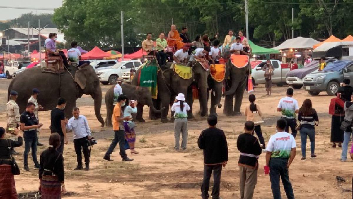 เปิดปางช้างชายแดน ถนนสายวัฒนธรรมดึงเศรษฐกิจ