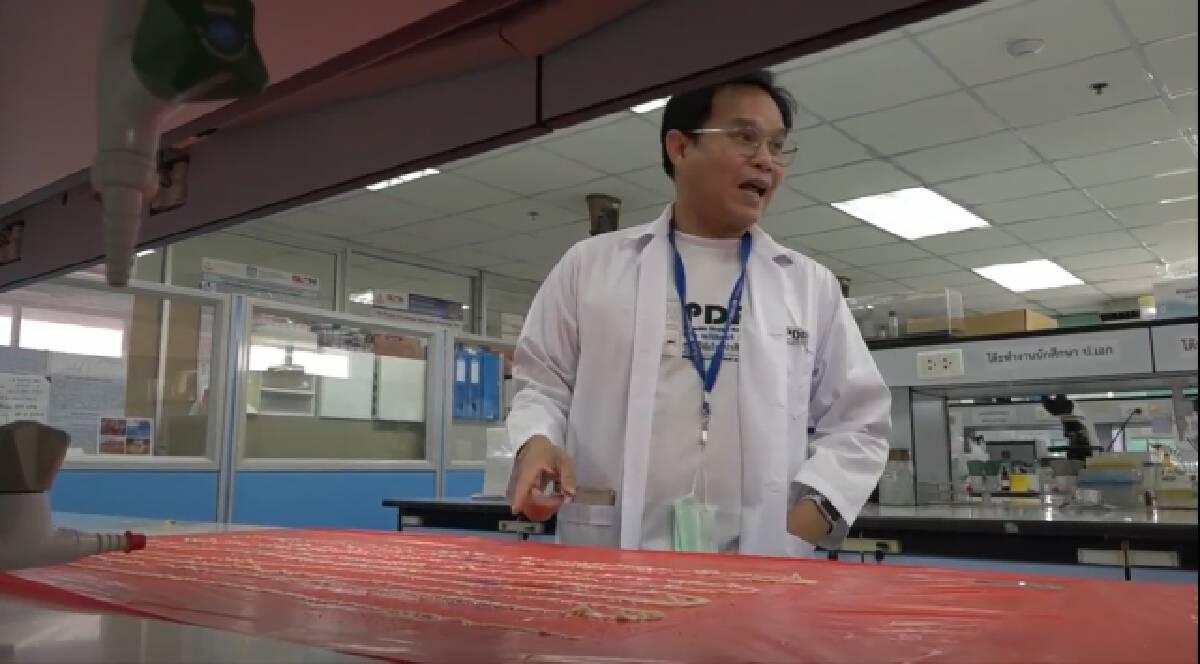 ตลึง!พบพยาธิตัวตืดยาว18 เมตร ผู้ป่วยชอบกินลาบดิบ
