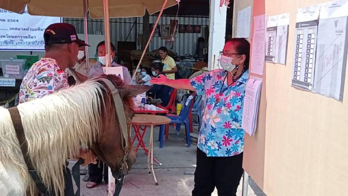 มาแล้ว ครูมวยชื่อดังขี่ม้าคู่ใจไปใช้สิทธิ์ สร้างสีสันเลือกตั้งเทศบาล