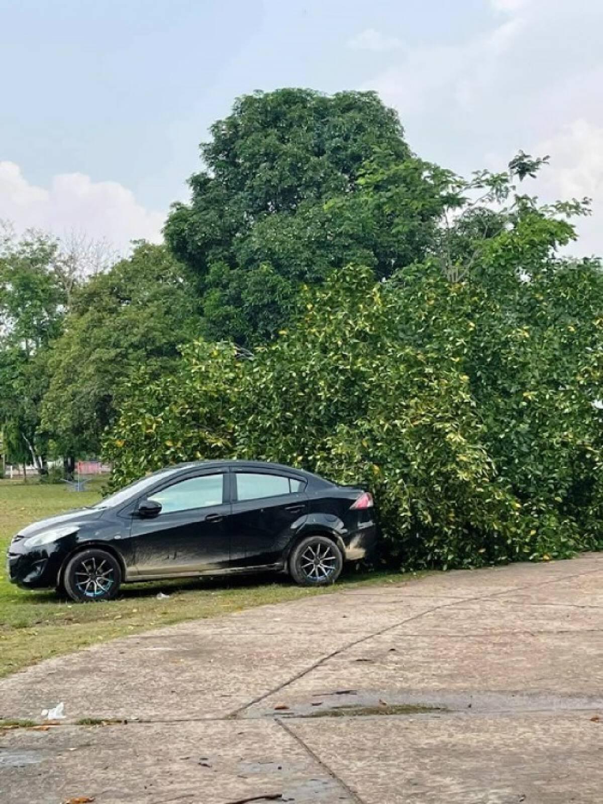 พายุฤดูร้อนถล่มนครพนม บ้านกว่า 20 หลังพังเสียหาย