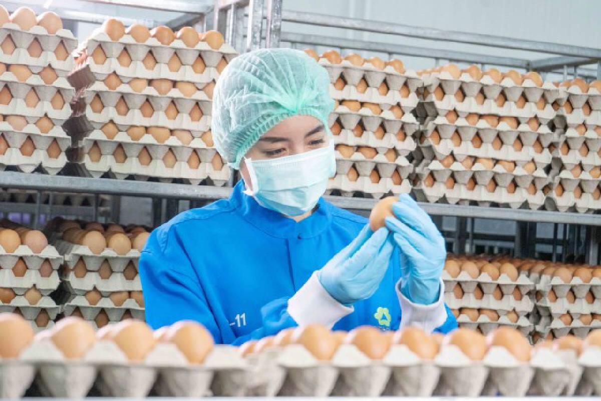 เครือเบทาโกร มุ่งยกระดับอุตสาหกรรมอาหาร ผ่านการสร้างคุณค่าร่วม (CSV)