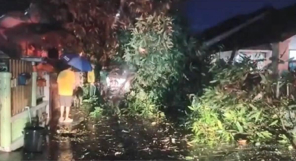 พายุลูกเห็บตก 4 อำเภอ ต้นไม้หักโค่นหลังคาปลิวว่อน