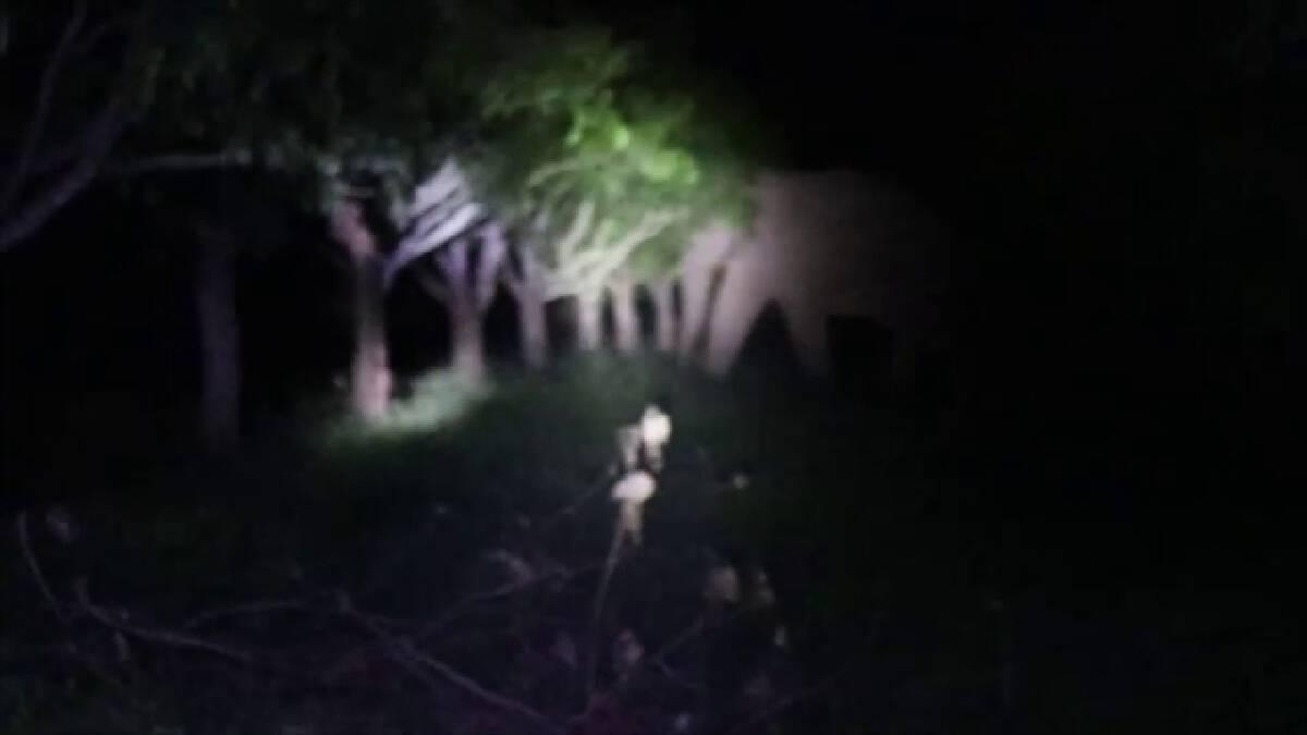 ช้างป่าเขาใหญ่ ลงลุยกินสวนมะม่วงขากลับติดหล่ม