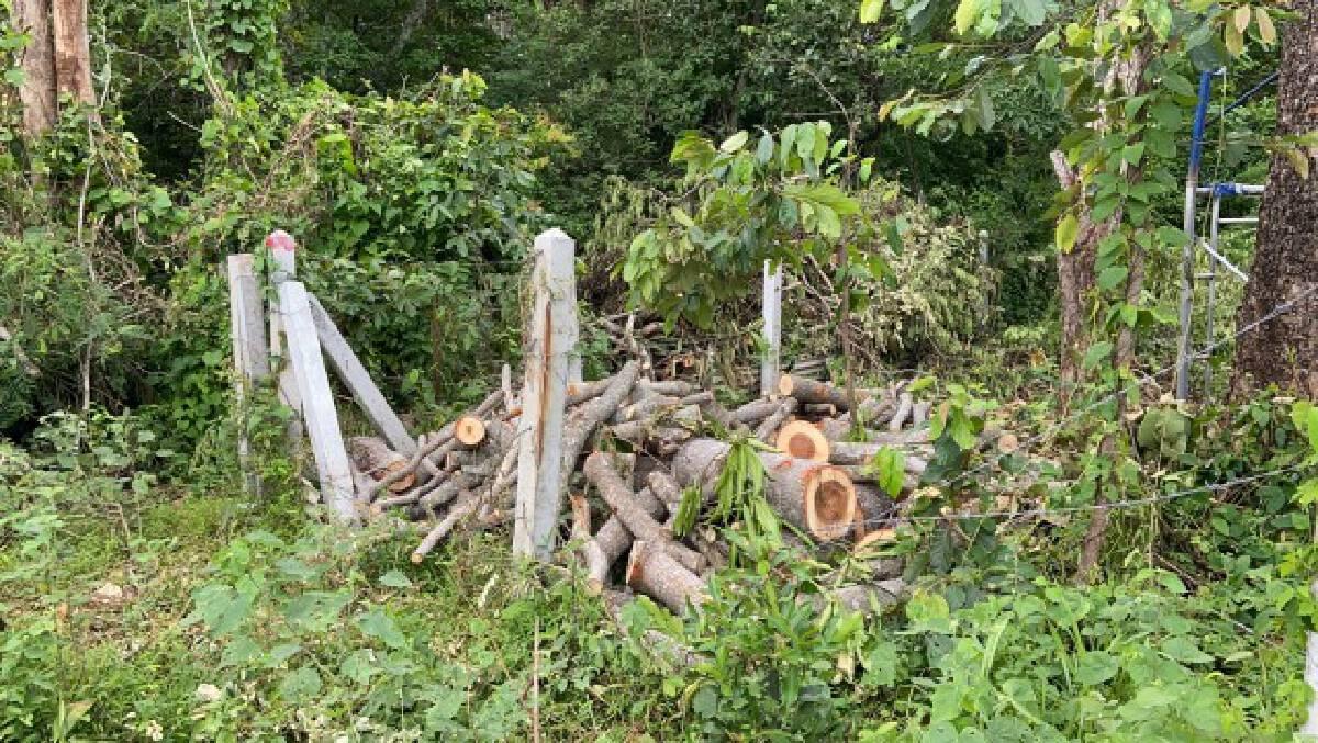 ชาวบ้านร้องสำนักสงฆ์ตัดต้นไม้ ห้ามโยมผู้หญิงเข้า