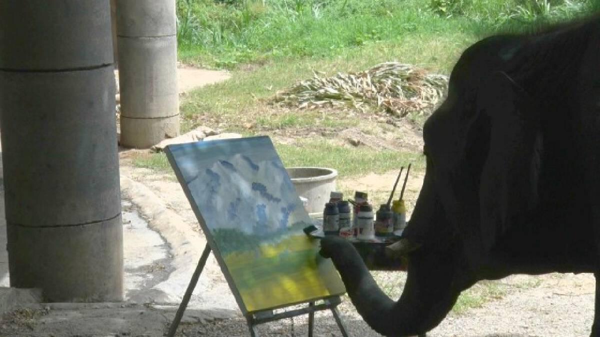 """""""ช้างธันวา""""เขียนรูปประมูล-หาเงินช่วย""""พลายดัมโบ้"""""""