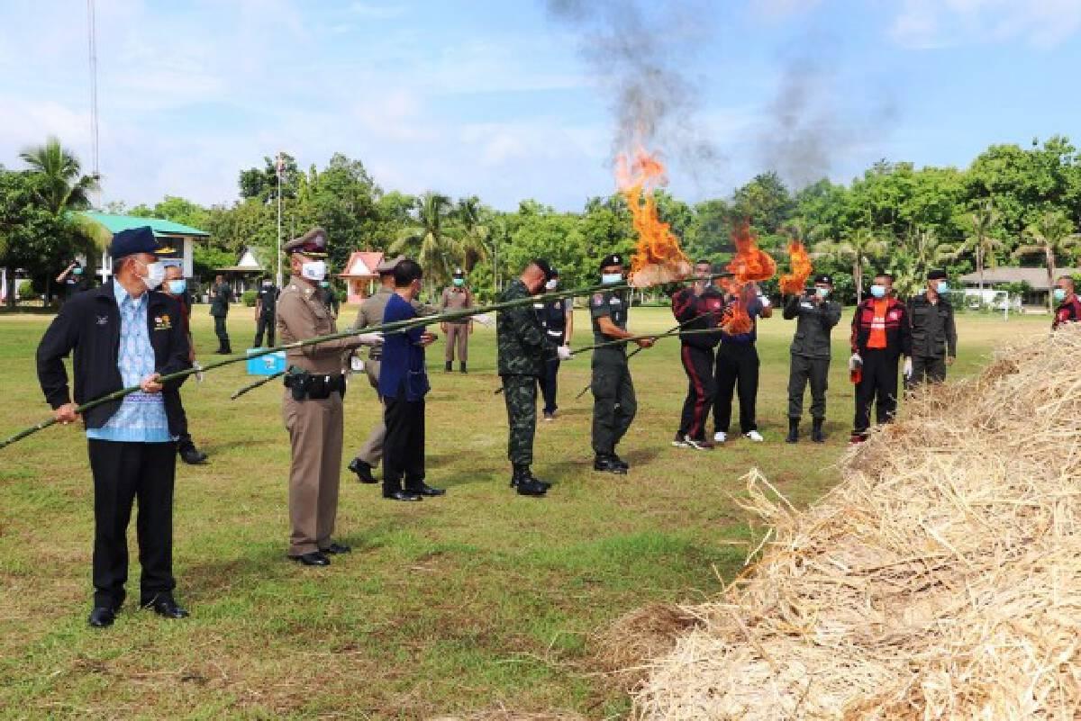 เผาทำลายกัญชาของกลางอีก 1.9  ตัน