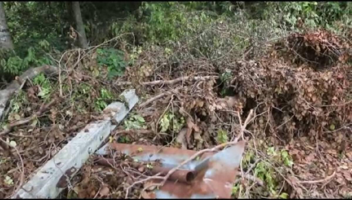 ชาวบ้านขอให้ตรวจสอบ ตัดไม้พะยูงในวัดไม่เป็นไปตามประชาคม