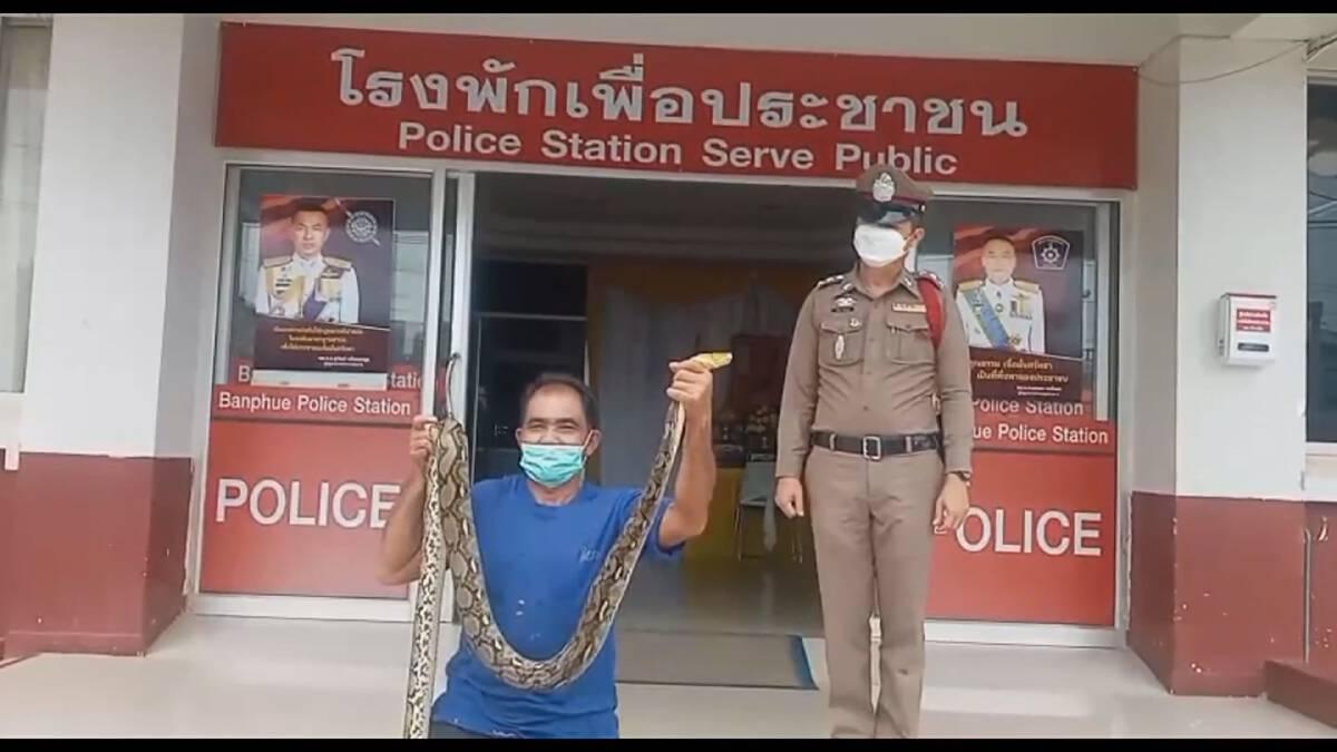 ลุงจับงูหัวขโมยกินไก่ในเล้า ขึ้นโรงพักส่งให้ตำรวจปล่อยสู่ธรรมชาติ