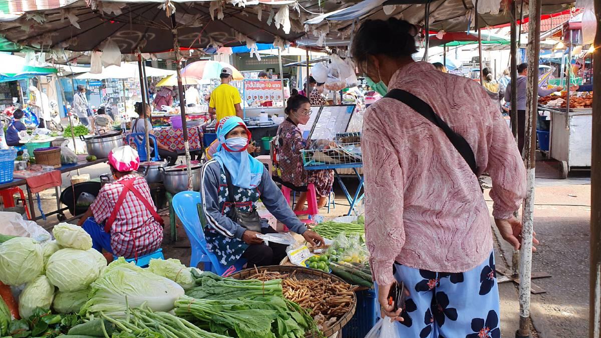 แพงขนาดไหนก็ซื้อ!พืชสมุนไพรขิง-ข่า-กระชาย ราคาพุ่งไม่พอขาย