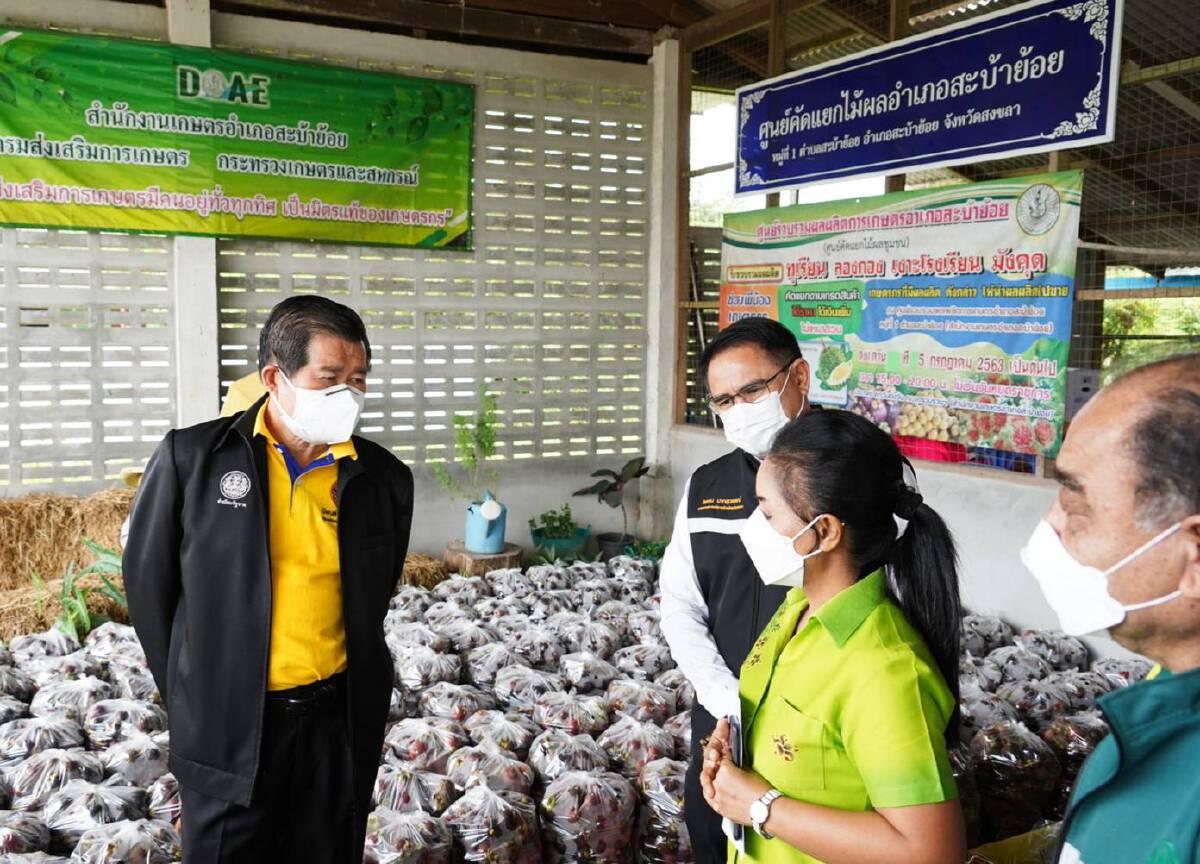 มท.2 ร่วม อปท. ใช้กลไกมหาดไทยเพิ่มแหล่งรับซื้อผลไม้ภาคใต้