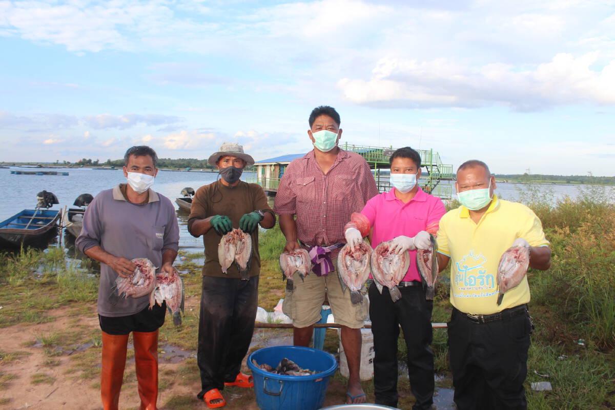 ชาวกระชังเขื่อนลำแชะ ทำปลาแดดเดียวมอบให้ผู้กักตัวในบ้านพัก