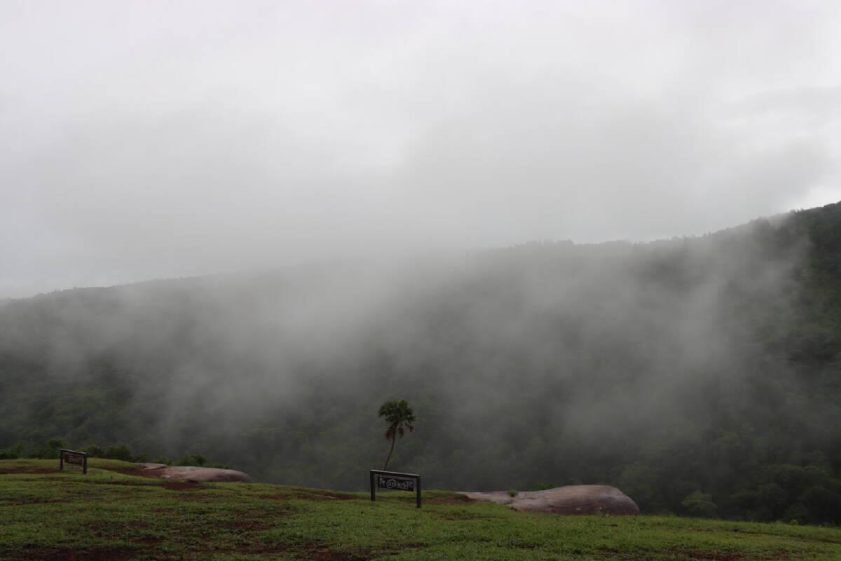 """สัมผัสหมอกยามเช้า-วันฝนโปรยบน """"ภูหินร่องกล้า"""""""