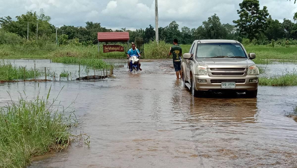 น้ำมูลล้นตลิ่ง ท่วมถนนทางเข้าวัด นาแปลงใหญ่ทุ่งสัมฤทธิ์ เสียหาย