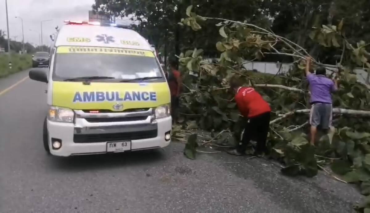รถกระบะบรรทุกไม้กวาดเสียหลักพุ่งชนต้นไม้และป้ายบอกทาง
