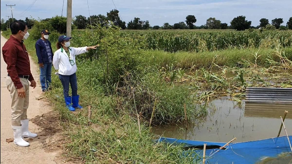 สำรวจความเสียหายหลังน้ำลำเชียงไกรล้นเข้าท่วมพื้นที่การเกษตร