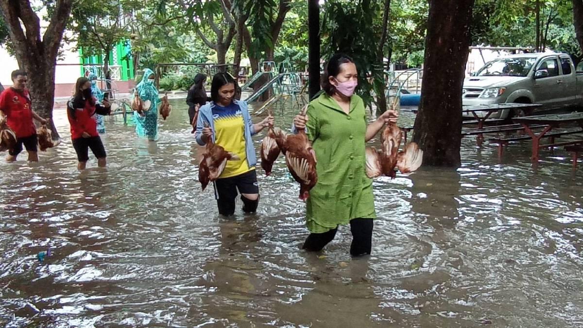โรงเรียนโคราชเร่งขนย้ายไก่ที่เลี้ยงไว้ใน รร.หนีน้ำท่วม