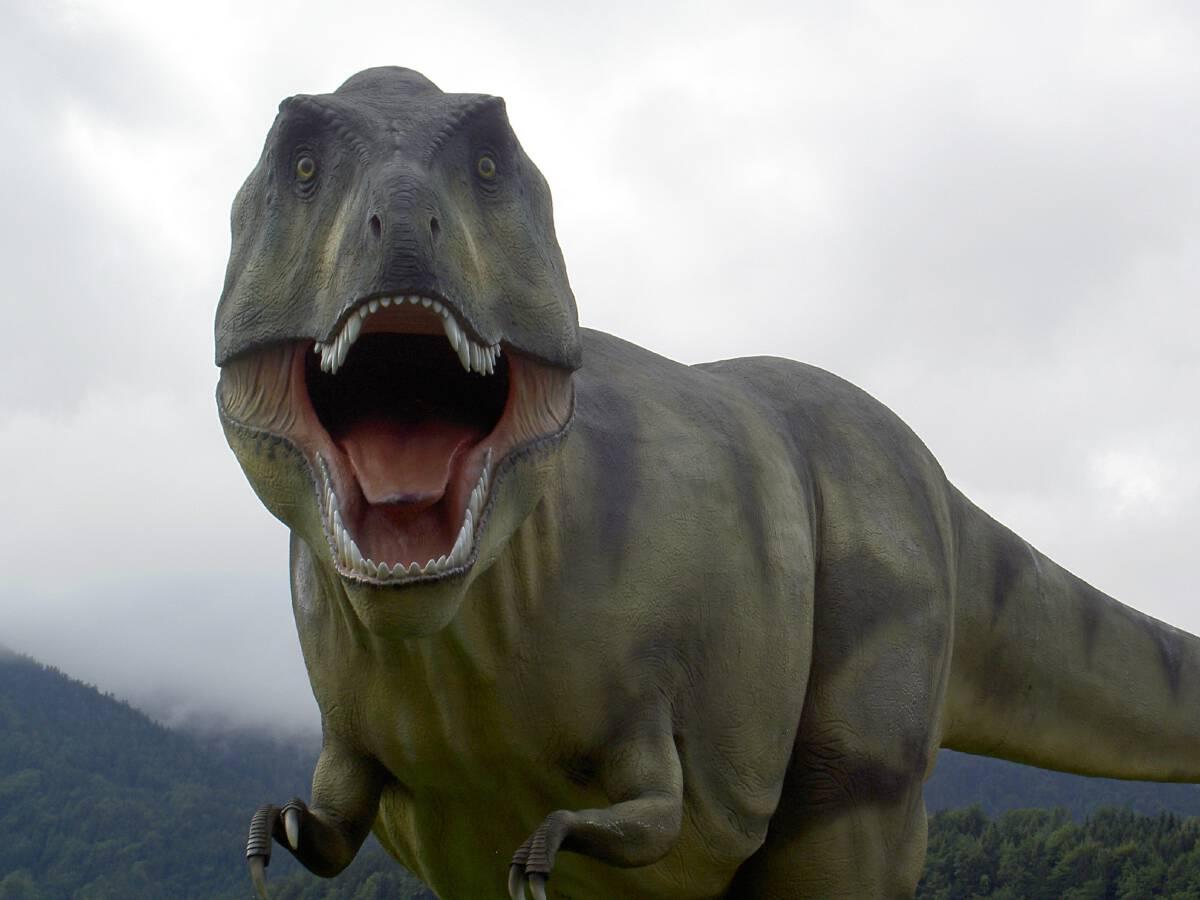 ไดโนเสาร์ T-Rex ห่างไกลจากที่เห็นใน Jurassic Park