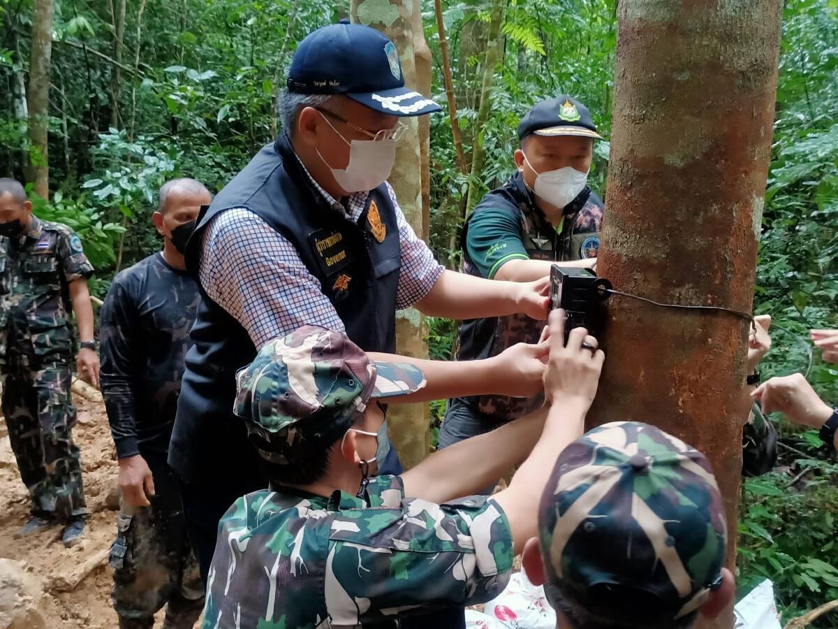 เร่งสร้างโป่งเทียมสุราษฎร์ฯ แก้ปัญหาช้างป่า