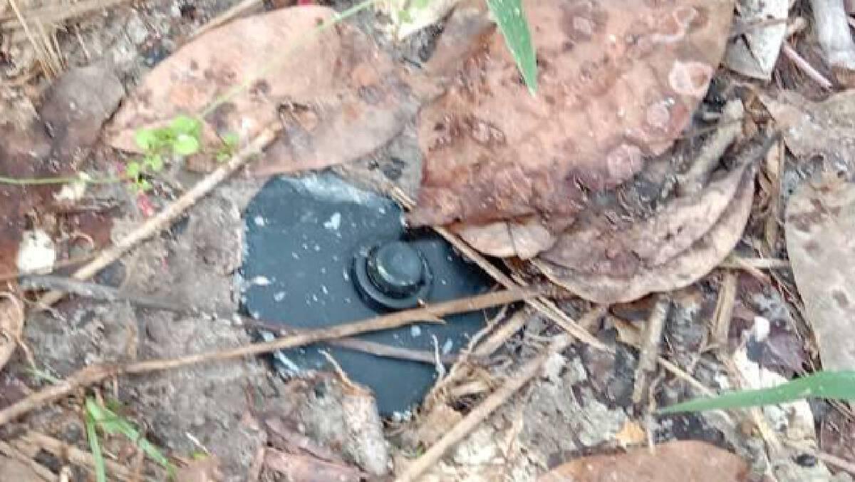 โจรใต้ป่วน! ลอบวางระเบิดในสวนยางโชคดีเจ้าของสวนพบแจ้ง EOD กู้ทัน