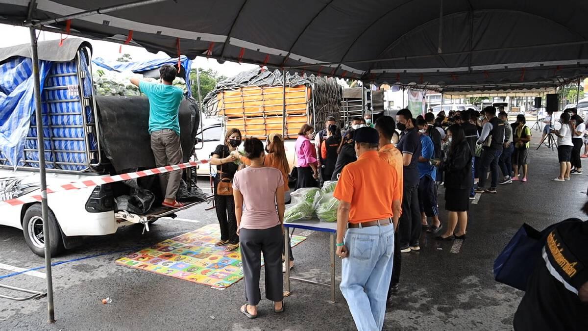 กล้วยหอมล้นตลาดผู้ว่าฯจัดตลาดนัดระบายผลผลิตกว่า 750 ตัน