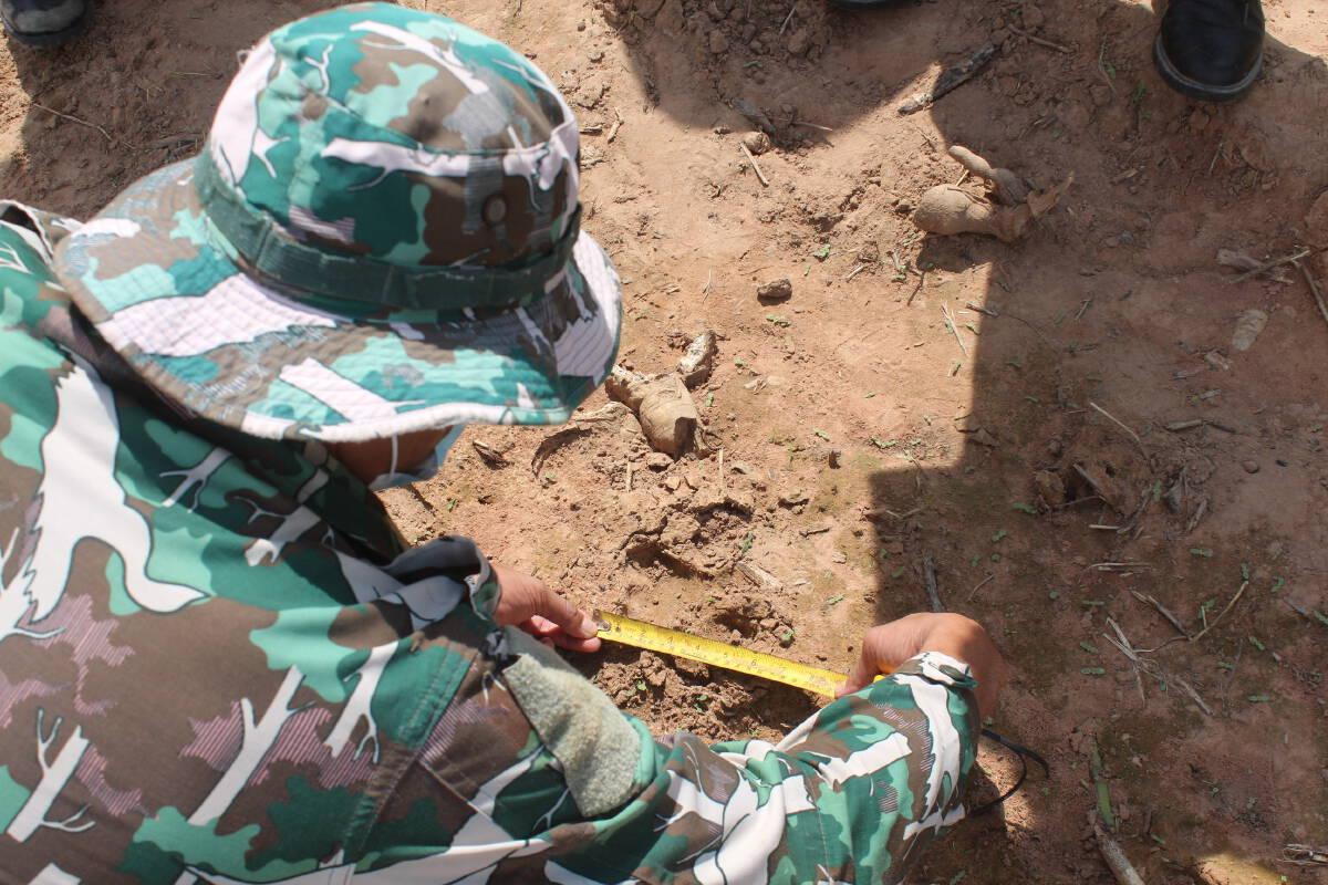ทับลานสุดวุ่นทั้งช้างทั้งเสือบุกที่ทำกินชาวบ้านที่ครบุรี