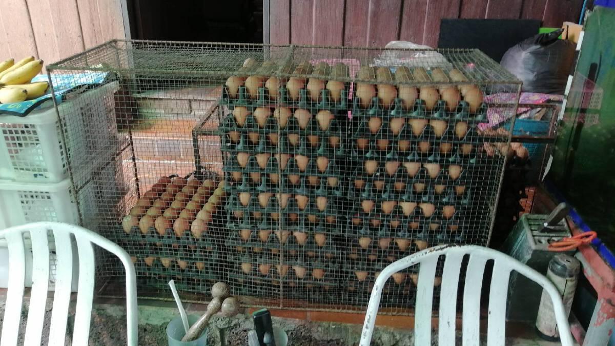 พิษโควิดแม่ค้าไข่ตลาดเมืองใหม่โอด-สูญรายได้วันละ 8,000 บาท