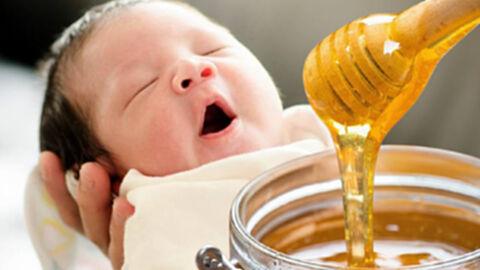 """ห้าม """"เด็กทารก"""" กินน้ำผึ้ง เพราะทำให้ได้รับสารพิษและติดเชื้อตายได้"""