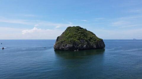 โวยเกาะรังนกพันล้าน 3 ปี ไม่มีผู้ประมูล หวั่นโดนขโมย